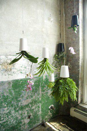 plantator-boskke-sky-prevratite-vash-mir-vverx-dnom-3