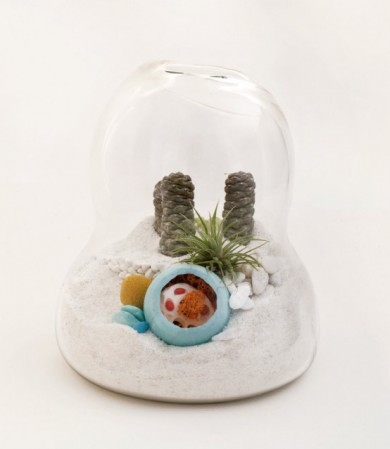 ruchnye-steklyannye-terrariumy-ot-litill-6