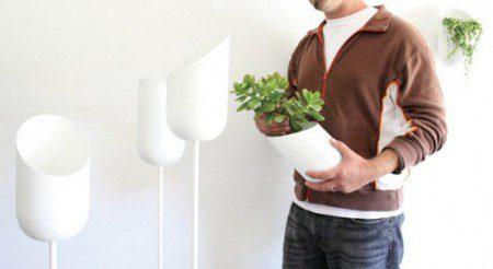 белые горшки для ваших растений