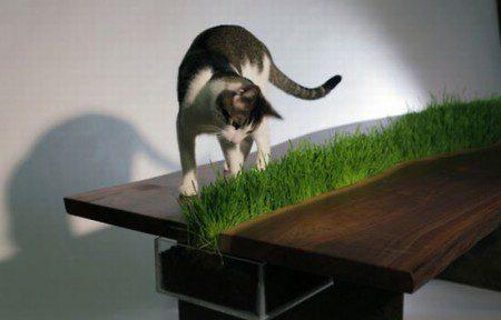 Интрересный и необычный стол