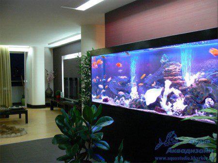 декоративное оформление аквариума