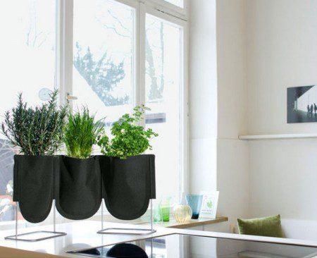 Висячие сады у Вас дома