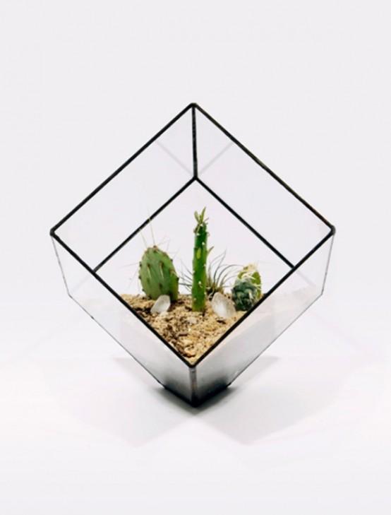 террариум из стекла