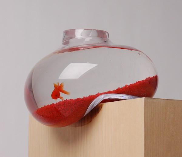 Гениальная идея: аквариум с искажением