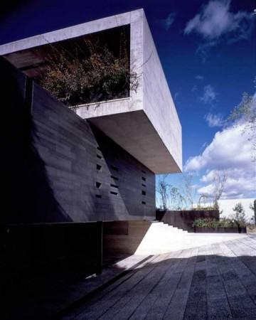 Дом из стекла и бетона в Мексике 3