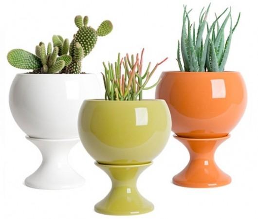 Красочная коллекция горшков для растений