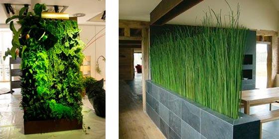 Зонирование комнаты с помощью перегородки из живых цветов